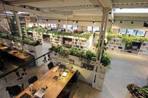 Lợi ích của việc xây dựng văn phòng xanh